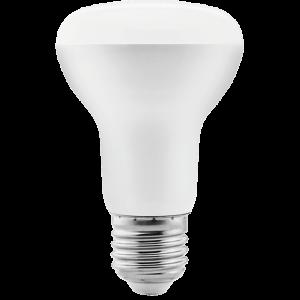 LED R Lamp Series